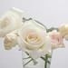 0905 flowers #4