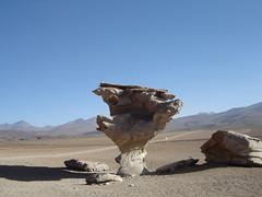 atacama desert bolivia (nadia_banana) Tags: bolivia salvadordali middleofnowhere salardeuyuni atacamadesert