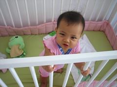 new crib