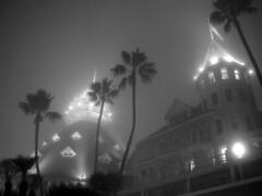 misty del (SoloAperture) Tags: california blackandwhite bw white mist black fog palms hotel sandiego palmtrees coronado hoteldelcoronado