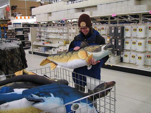 funny fish pillows