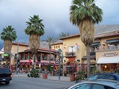 Palm Springs, CA (benjaminfish) Tags: california sun palmsprings palmtree