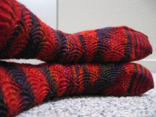080311 pomatomus socks