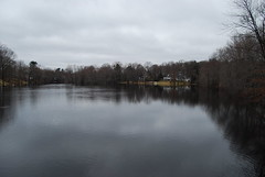 Sudbury River Flooding (bawoodvine) Tags: trees winter massachusetts concord floods streamsandrivers