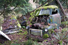 03-16-08 159 (c.updegrave) Tags: abandoned moss decay junkyard wreckingyard d80 abandonedoregon oldrustycars