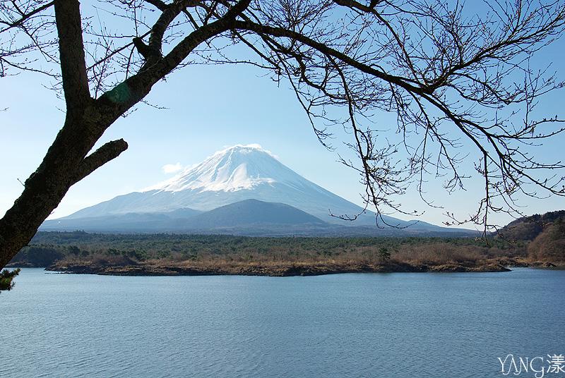 富士五湖之精進湖
