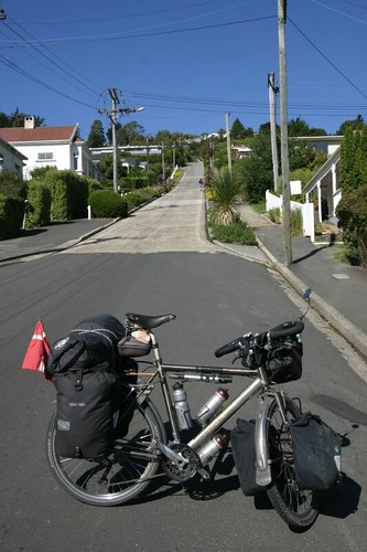 The World's Steepest Street. Dunedin.