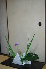 Ikebana course in Kyoto (Otomodachi) Tags: pictures flowers iris flower japan photo freestyle flickr photos ikebana beelden images fotos bloemen flowerarrangement plaatjes bloem slidingdoors bloemistenverdriet japaneseflowerarrangement bloemschikking schuifdeuren schikking womensassociationofkyoto