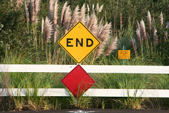 end of the road (artfilmusic) Tags: road sign