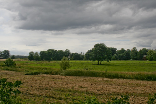 Naturpark Südheide