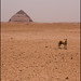 Pirámide Combada