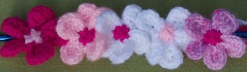 Sakura flower front