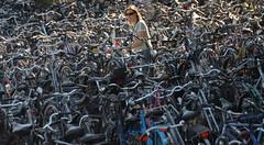 Fiets zoeken in Maastricht (FaceMePLS) Tags: maastricht nederland thenetherlands bikes fietsen ih fietsenstalling tweewieler nikond200 bicycleshed facemepls zoekennaarjefiets
