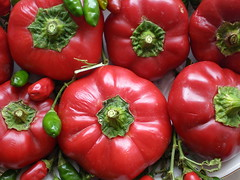 Red peppers (fiammetta53) Tags: red stilllife food macro verde green vegetables rouge rojo colorful pimento chiles vert explore peppers rosso pimiento redpepper poivron chillies hotpepper naturamorta allegria peperoni verdura peperonata pimentes blueribbonwinner chillipepper pimientorojo papaccelle colorphotoaward diamondclassphotographer flickrdiamond peperonicini fiammetta53 colourartaward pfogold piperies peperonimaturi ripenedpeppers pipireddu piperis pibaroni piberoni rotrossorougerood fotocompetition fotocompetitionbronze