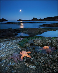 Moonset at Seal Rock Beach (realkuhl) Tags: ocean longexposure copyright oregon john all starfish  fullmoon rights oregoncoast reserved moonset facebook naturesfinest singleexposure echinodermata lehmkuhl sealrockbeach mywinners abigfave excellentphotographerawards