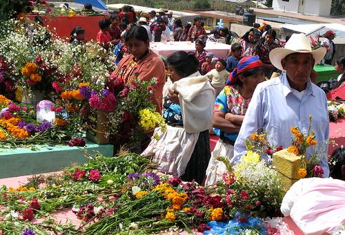 Flowers, Dia de Los Santos, San Martín Sacatepéquez, Guatemala