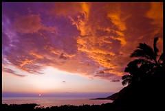 Autumn Sunset #2 (konaboy) Tags: autumn sunset usa silhouette hawaii interestingness bravo bigisland kona coconutpalm naturesfinest kealakekuabay impressedbeauty 8661b