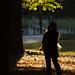木陰の人影