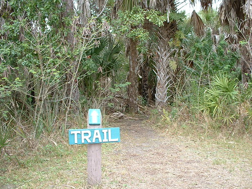 Hiking, Florida style