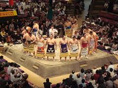 Sumo-samas' Lineup! (Namisan) Tags: japan sumo