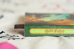 The Chamber of Secrets (*Alyssa.) Tags: hp harrypotter 50mmf18 ilovethisseries andthechamberofsecrets