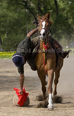 Maj Pathan Trick Riding (Captain Suresh Sharma) Tags: red horse india sports soldier uniform asia military performance dust hoof stallion highspeed nagar risky adventurous indianarmy horserider skilful welltrained ahemednagar schoolofarmoured