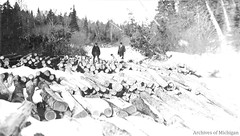 Stacked logs from the Au Train Softwood Job during winter (Central Upper Peninsula and NMU Archives) Tags: logging blackandwhitephotograph clevelandcliffsironcompany lumberers autraindistrict