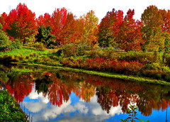 Fall in Oregon (oybay) Tags: trees red orange color reflection green fall nature water colors leaves yellow oregon mirror natural naturesfinest mywinners overtheexcellence