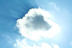 Riesling Skies