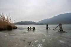 Frozen (Roveclimb) Tags: winter lake ice lago frozen erba lombardia ghiaccio canzo segrino