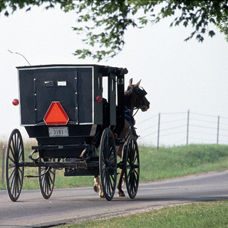 Amish Country 4