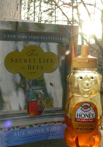 Secret Lives of Bees Read
