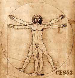 vitruvian man leonardo da Vinci by Leonardo da Vinci Foundation Italy.