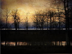 the narrows (anniedaisybaby) Tags: trees lake texture water silhouette dusk horizon manitoba landforms interlake lakemanitoba topography thenarrows welcometomyworld 10faves theworldthroughmyeyes passionphotography mywinners abigfave avision everybodyknowsthisisnowhere citritgroup moodyspooky goldstaraward skiescloudsandsun janzoni thebeautyoftrees justopenyoureyes