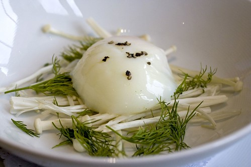 Soft poached egg, dill
