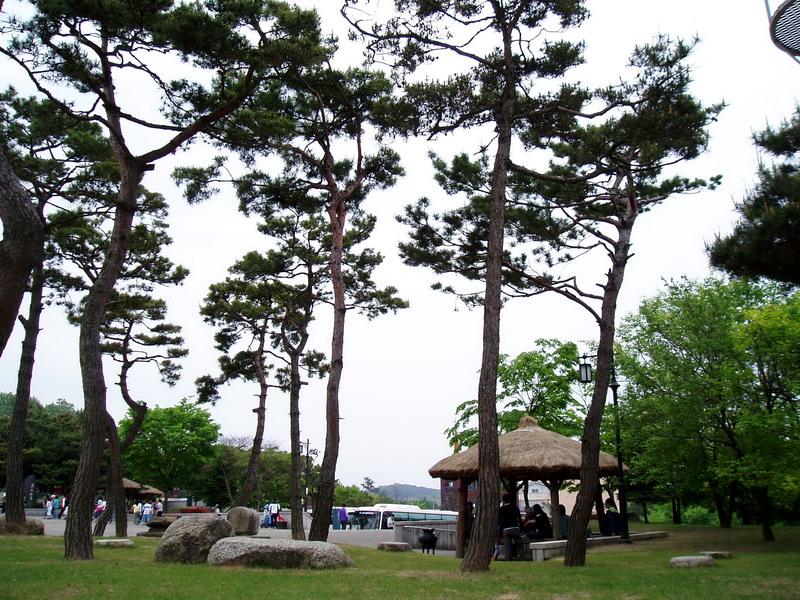 Buyeo Museum-1