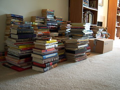 Note: Not actualy my books image credit to Kristin Brenemen