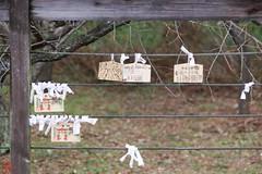 IMGP5525-5 (zunsanzunsan) Tags: 下日枝神社 山王森梅林 日和山 日枝神社 梅 神社 酒田市