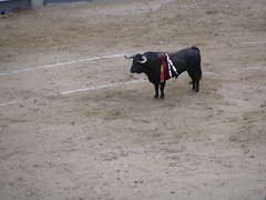 Plaza de Toros (feros82) Tags: madrid plazadetoros canonpowershotsx110is