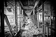 You're In My Blood (Thomas Hawk) Tags: bw usa abandoned graffiti unitedstates 10 michigan unitedstatesofamerica detroit motionblur urbanexploration packard packardplant urbex fav10 chrisluckhardt detroit0610dmu