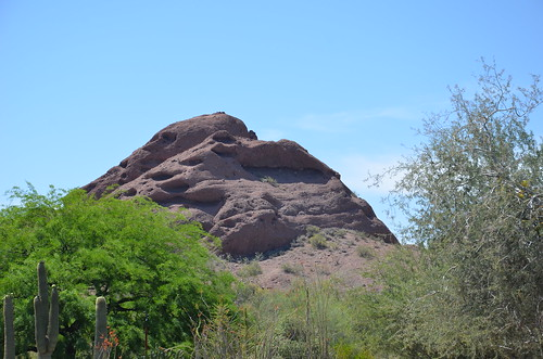 Arizona 2011 413