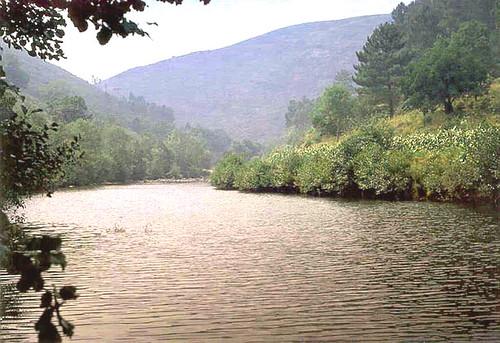 Rio Paiva - pequena barragem, ago/1981.