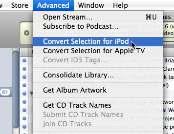 Convert Selection for iPod