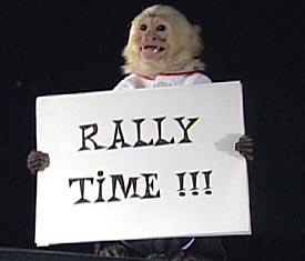 Rally_Monkey