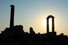 Temple of Apollo Ruins I - Didm, Turkey