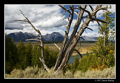 Viewpoint (James Neeley) Tags: mountains landscape grandtetons tetons viewpoint grandtetonnationalpark jamesneeley