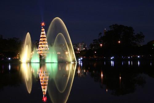 Arvore De Natal Do Ibirapuera