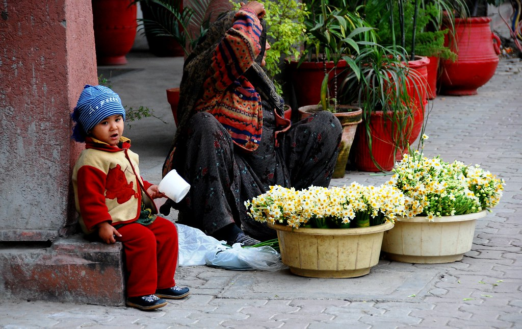 flower vender hill road islamabad dec 2007