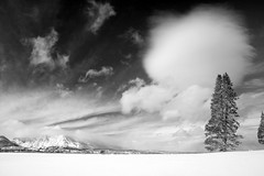 After the storm (Kass & Rachel) Tags: winter bw white snow storm clouds january meadow tahoe upper 2008 puffball truckee