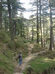 hike to dharmakot